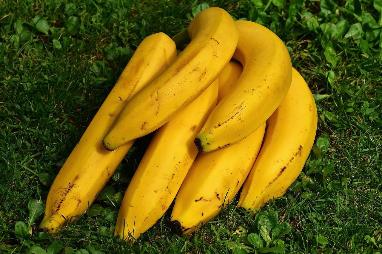 A Good Banana