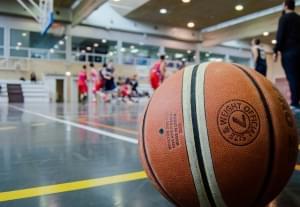 Sectional Semifinals Scoreboard- Amboy Girls Basketball Advances into Sectional Finals