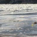 Rock River Frozen