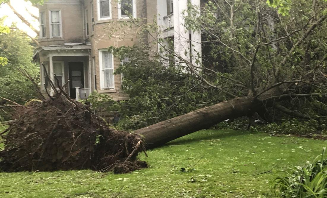 storm damage Tampico