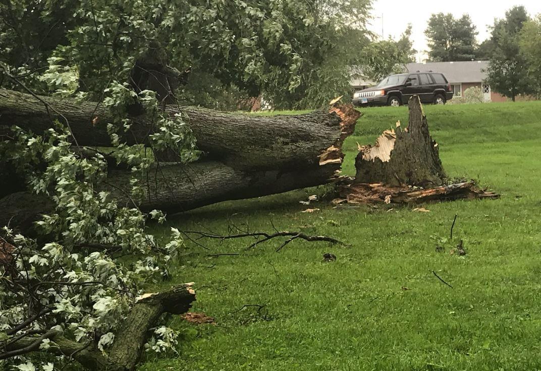 Storm Damage 2020 3