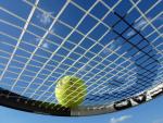 Girls Tennis Scoreboard- Dixon Wins at DeKalb