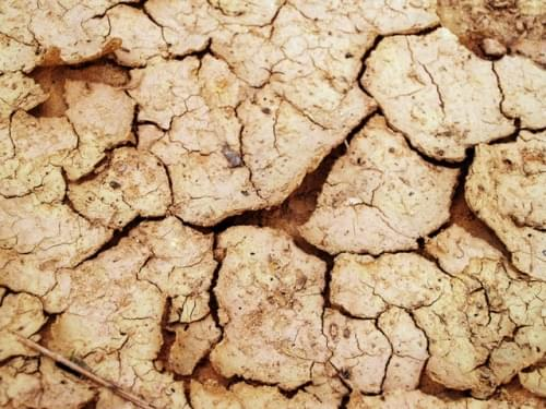 arid-clay-close-up-216693