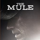 TheMuleThumbnail