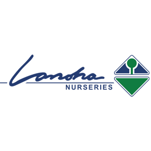 LanohaNurseries1