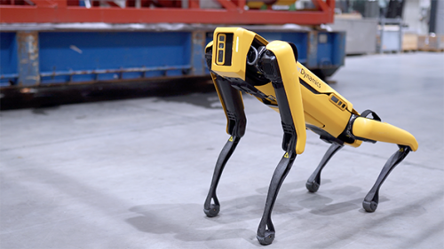 Terrifying Robot Dog Will Now Yell at You About Social Distancing