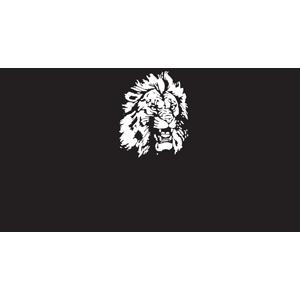 Lion's Automotive300x300