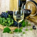 01-22-21 - healthy wines