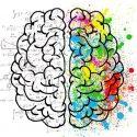 01-22-21 - Brain