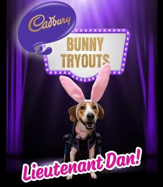 Cadbury Has A New Mascot