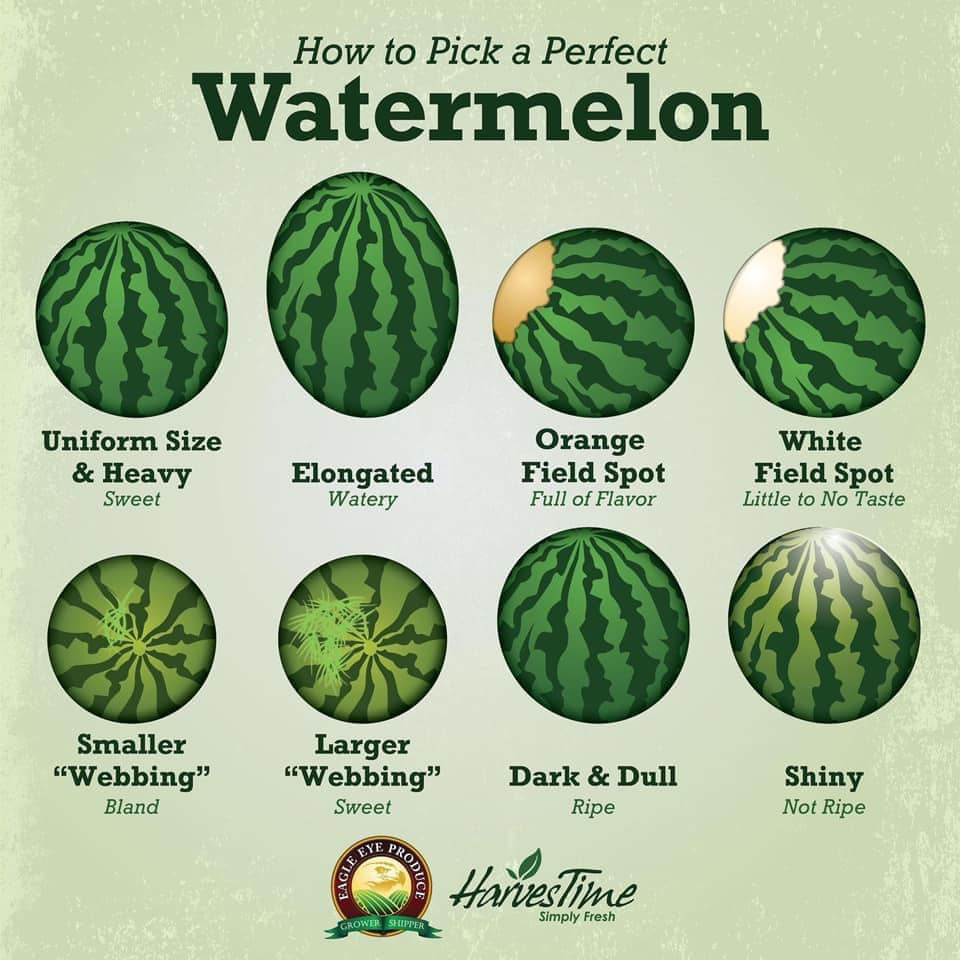Eagle Eye Produce Watermelon Chart