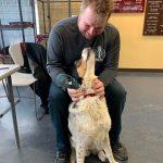 Rock 108 Fursday: Casey the Dog!