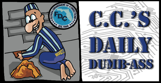 DAILY-DUMBASS17