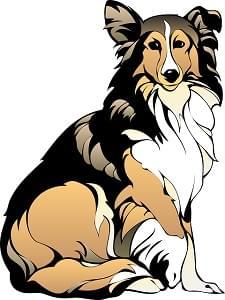 dog-48490_640