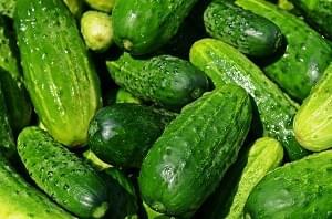 cucumbers-849269_6401