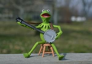 Music Plus Muppets Equals Happiness!!