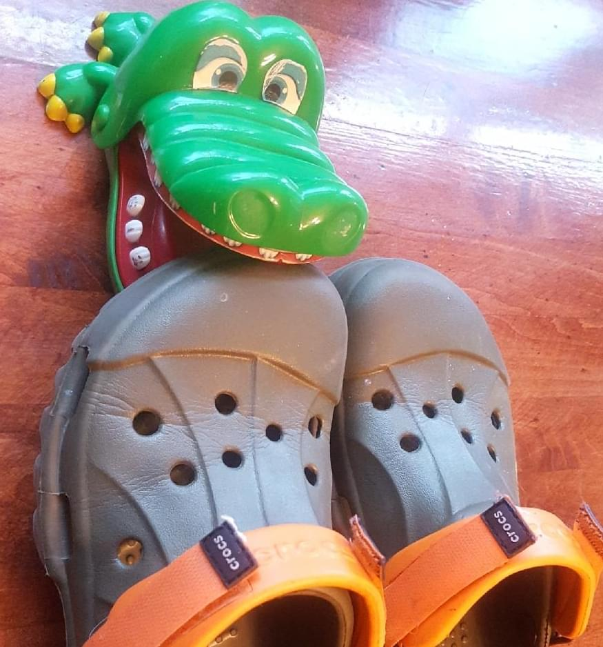 crocs croc