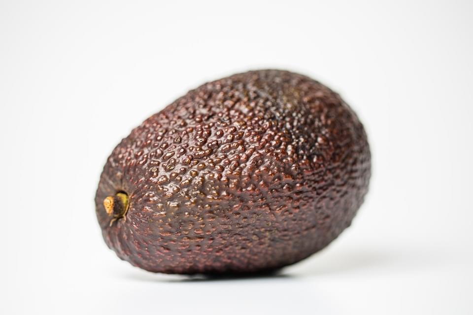 avocado-1171725_960_720