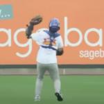 Highest Baseball Catch Ever