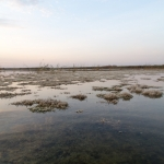 Rock River, Lake Koshkonong Water Levels Update