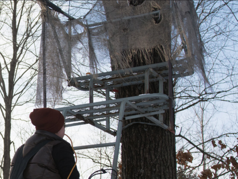 Wisconsin Deer Stands Damaged; Animal Rights Group Suspected