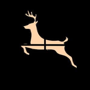 This is opening day of shotgun deer hunting season