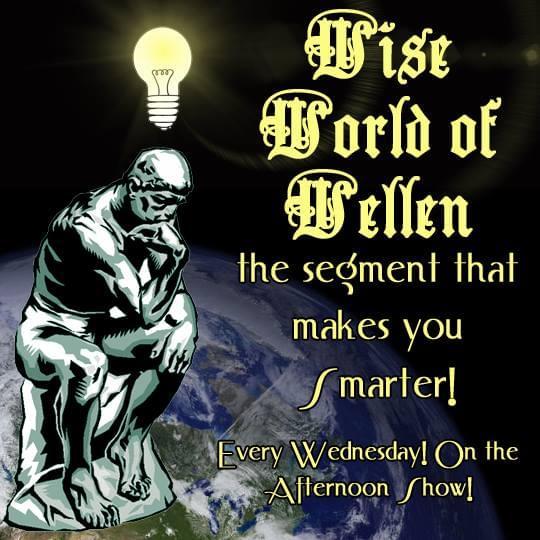 Wise World of Wellen