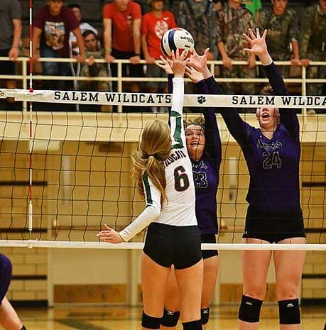 Lady Cats Fall To Central, SC Stays Hot, Columbia Wins Again Over Carlyle