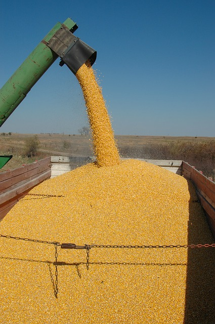 Biofuels producers, farmers not sold on switch to electric