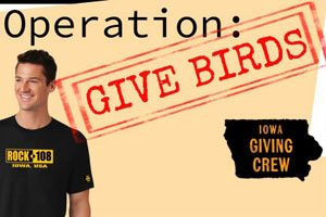 Give Bird Feature_300x200