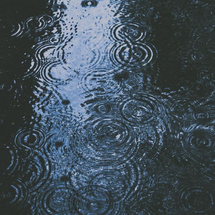 stencil.blog-post-image (2)