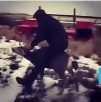OSP Fish & Wildlife arrests man for wildlife harassment