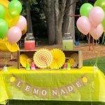 O'Ban: Government should leave lemonade stands alone
