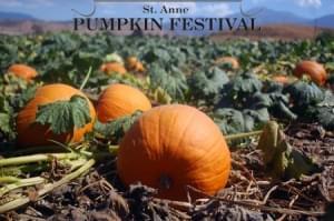 No 2020 Pumpkin Fest
