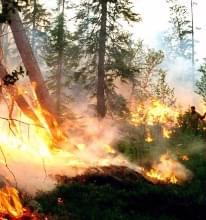 Cuanto Nos Afectara Este Incendio