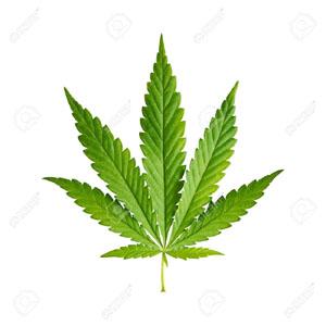 Fresno City Council moves toward legalizing medicinal marijuana