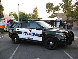 Bakersfield Police search for refrigerator burglar