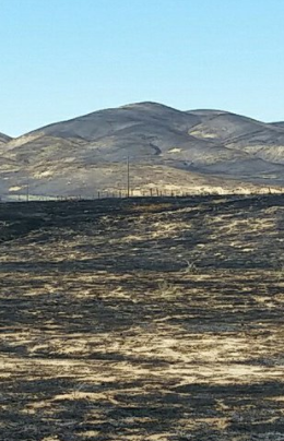 Fires continue to keep firefighters busy around state