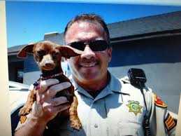 A retired investigator breaks down the reign of terror of the Golden State killer