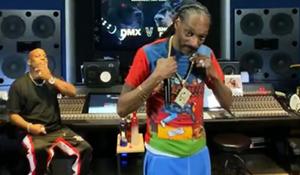 Snoop vs DMX Verzuz Battle