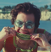 Checkout The New Harry Styles Video