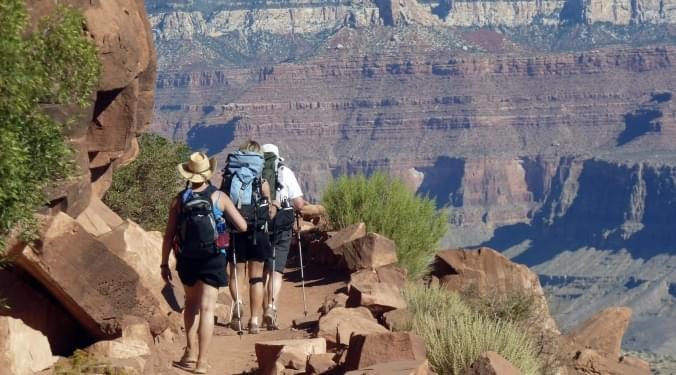 Take a (virtual) Hike! | Cindy Davis |