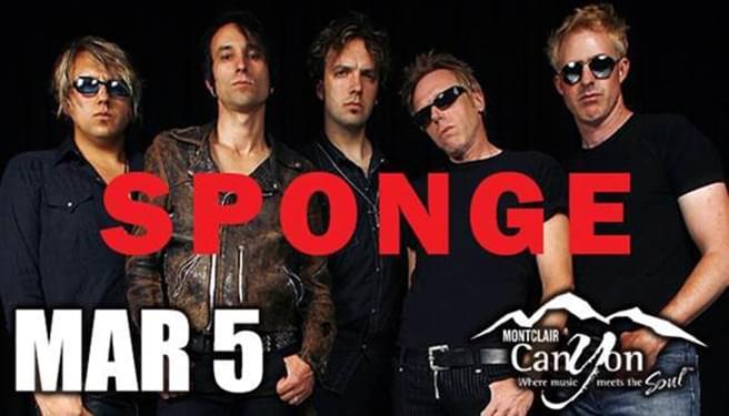 Sponge 3/5
