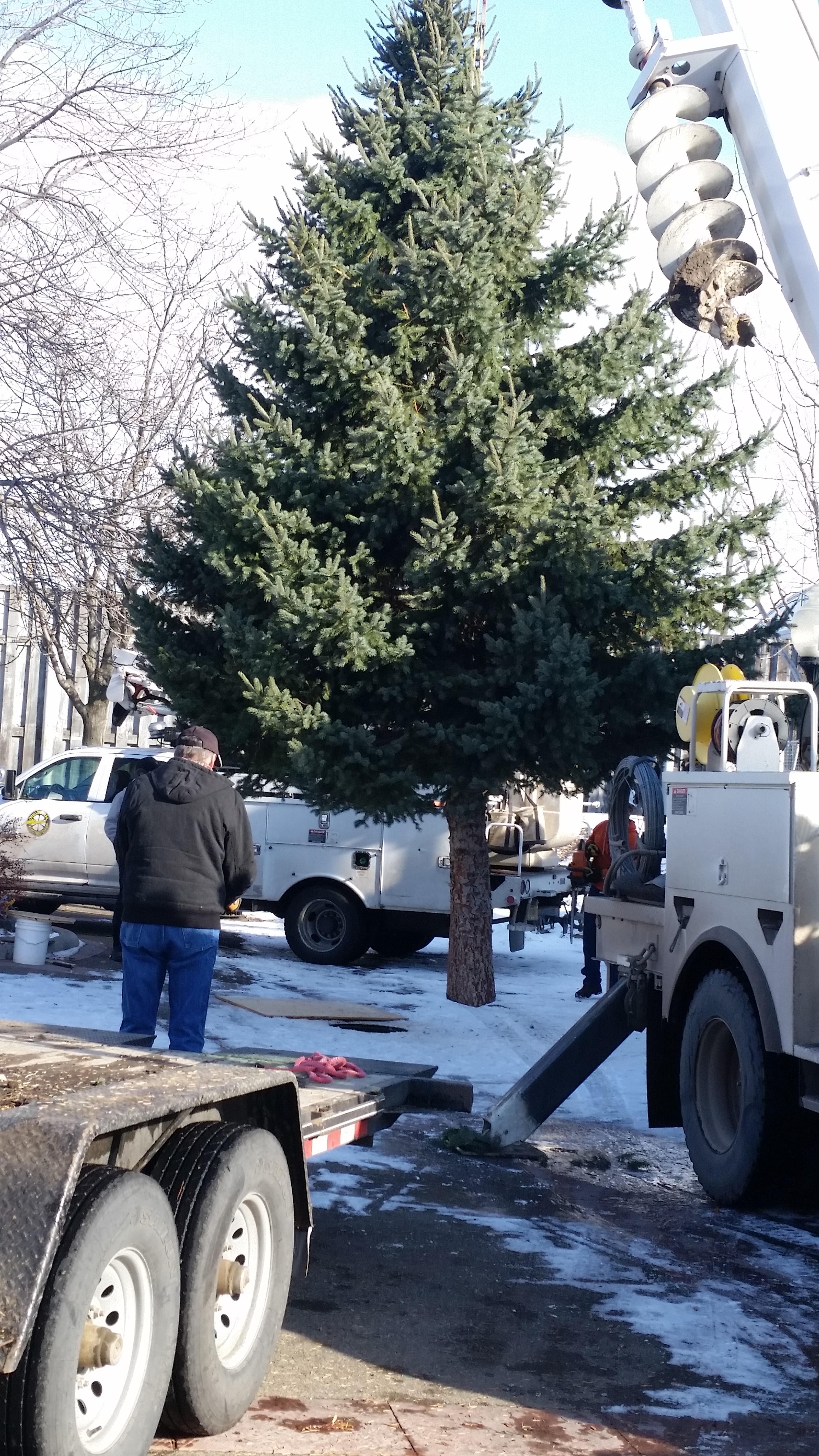 LA GRANDE:  Parade and Tree lighting