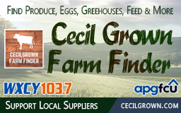 Cecil Strong – Find & Support Local Suppliers