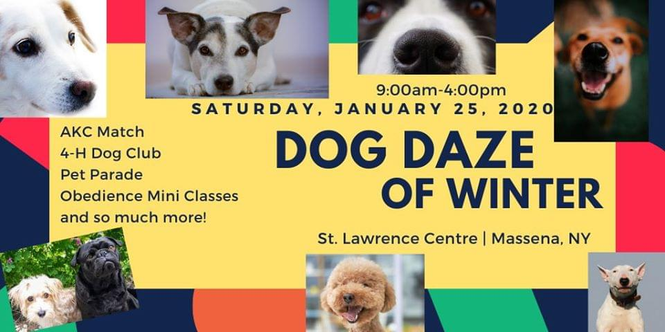 Dog Daze of Winter
