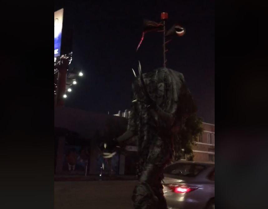 Late Nite Video | Siren Head