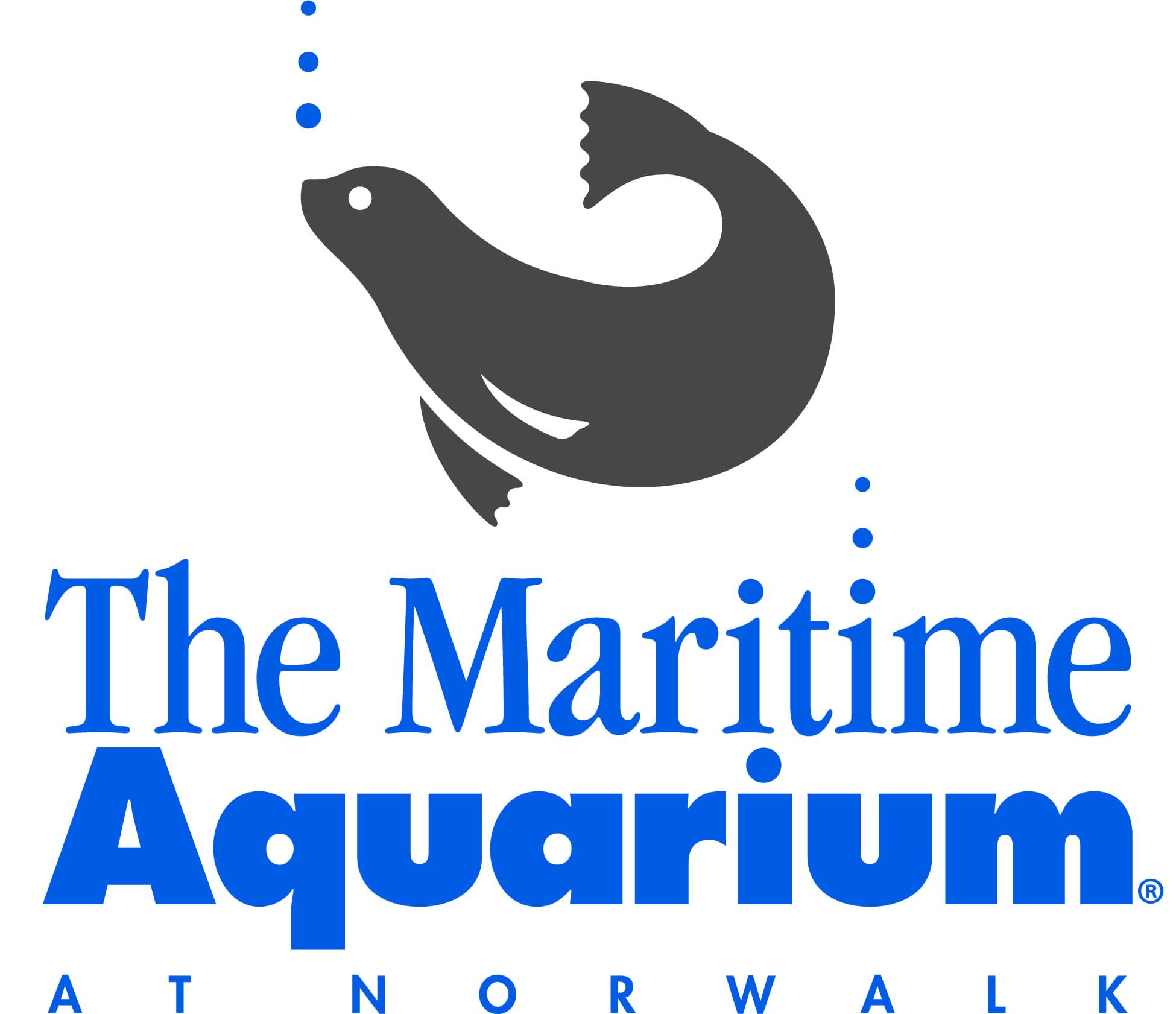 Star 99.9 at Maritime Aquarium's Stuffed Animal CARE-ium
