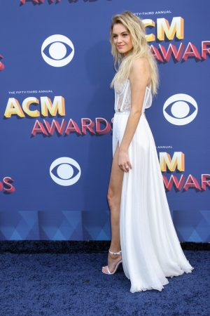53rd Annual Academy of Country Music Awards (ACM) - Arrivals