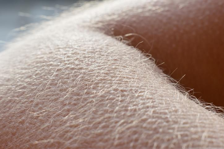MUNDANE MYSTERIES: Why do we get goosebumps when we're cold?